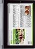 Lenovo Yoga 2, 10 inch (4G LTE) Mobile Phone